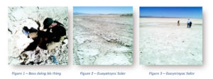 ais-resources-guayotayoc-salar-lithium-project
